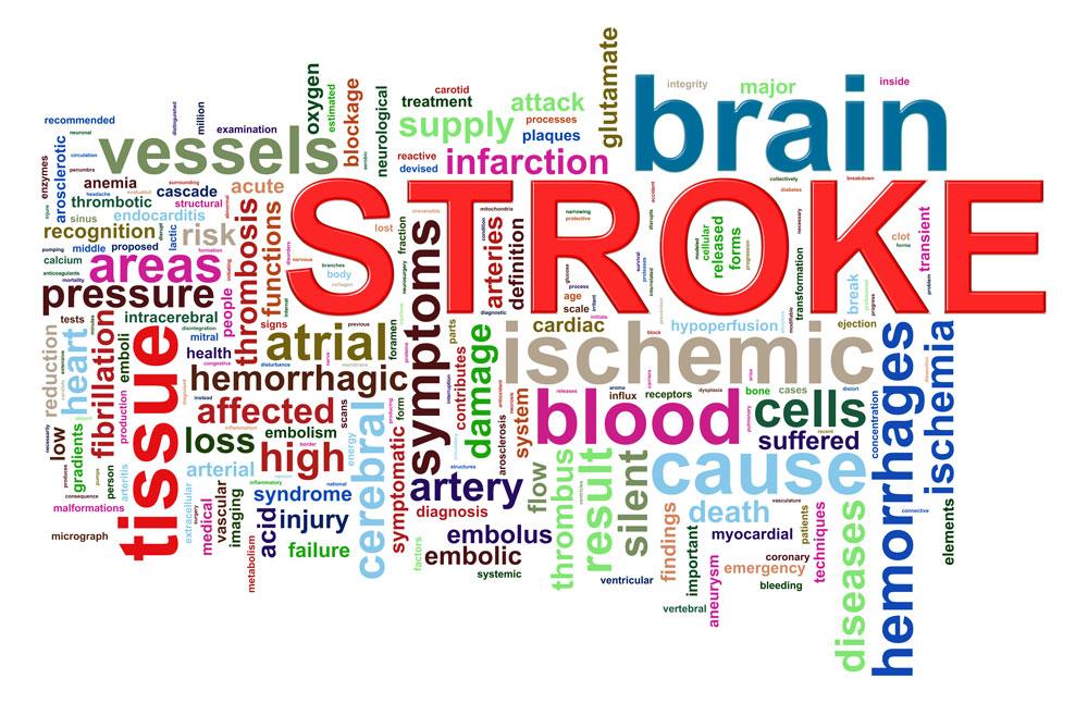 strokephraselores